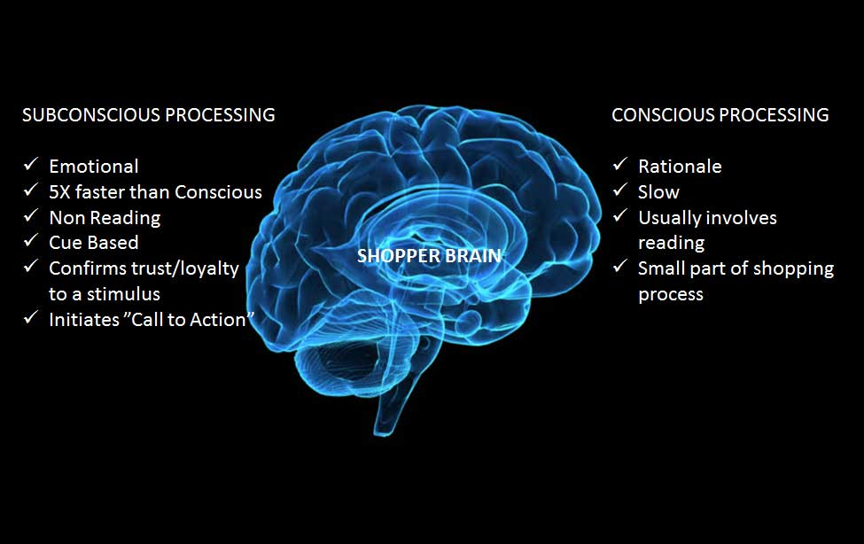 The Shopper Brain
